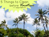 5 Things to Clean Before a Vacation