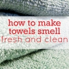 get rid of mildew smell