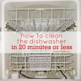 How to Clean the Dishwasher in 20 Minutes or Less