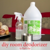 How to Get Rid of the Musty Smell {DIY RoomDeodorizer}