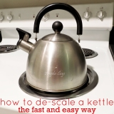 How to De-scale a Kettle {the fast and easyway}