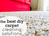 The Best DIY Carpet CleaningSolutions